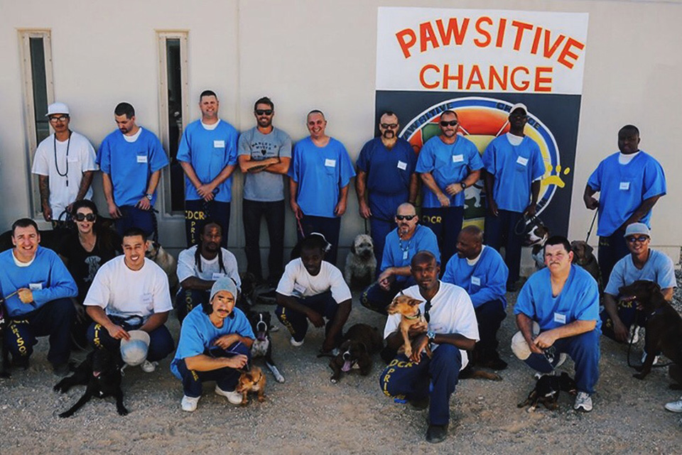 Marley's Mutts, The Pawsitive Change Program